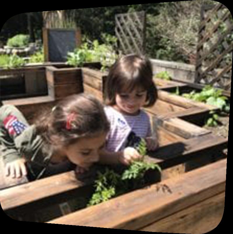 Children in garden outside